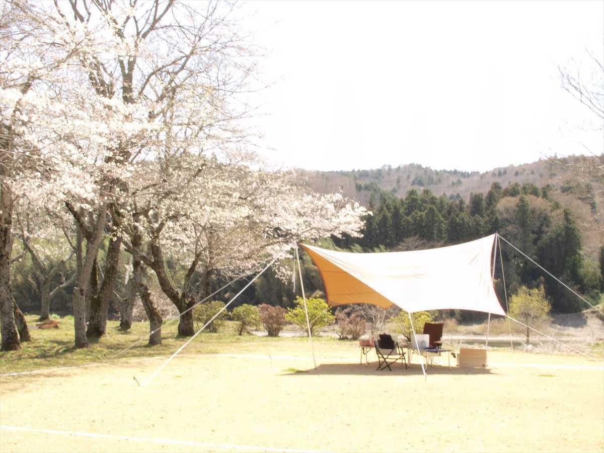 パシフィック リゾート キャンプ 場