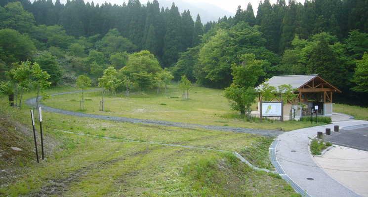 田浪キャンプ場の画像mc19666