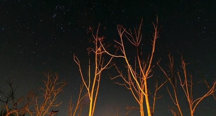大芦高原キャンプ場-Oh!Ashi Forest-の画像mc11465