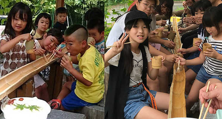 飛騨小坂ウッディランドふれあいの森の画像mc4851