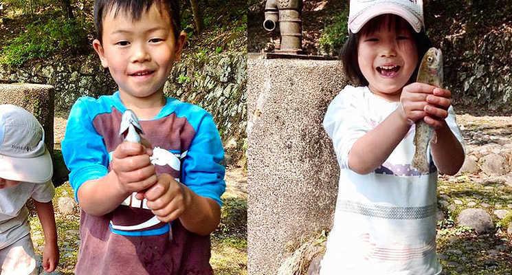 飛騨小坂ウッディランドふれあいの森の画像mc4852