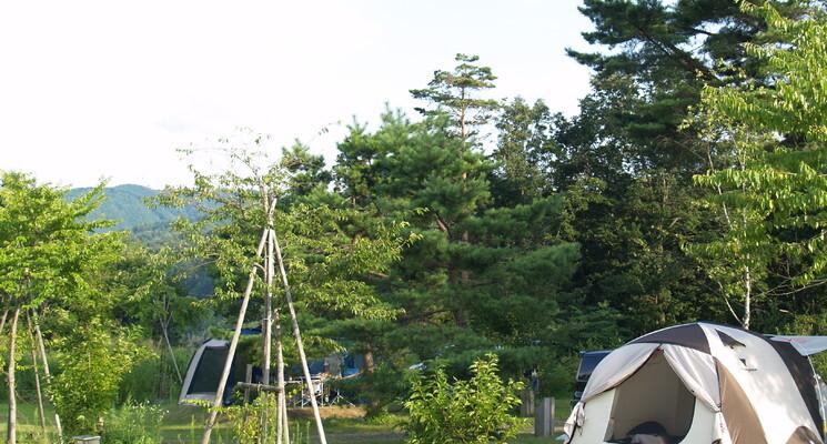 さくら街道みぼろ湖畔キャンプサイトの画像mc13084