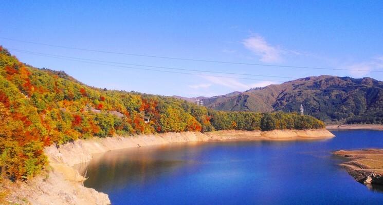さくら街道みぼろ湖畔キャンプサイトの画像mc13087