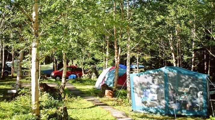 胡桃島キャンプ場の画像mc15634