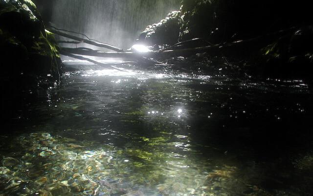 くるみ温泉&キャンプの画像mc6164