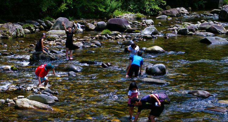 くるみ温泉&キャンプの画像mc6165
