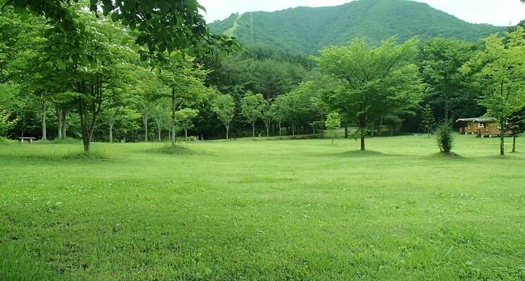 オートキャンプ場 きららの森の画像mc9692