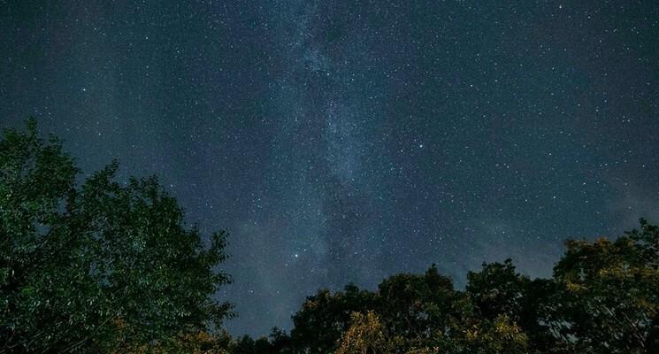 オートキャンプ場 きららの森の画像mc9792