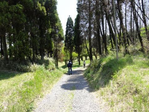 阿蘇くじゅう国立公園阿蘇山三合目坊中野営場(坊中キャンプ場)の画像mc8726