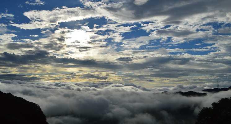 わらび平森林公園キャンプ場の画像mc4957