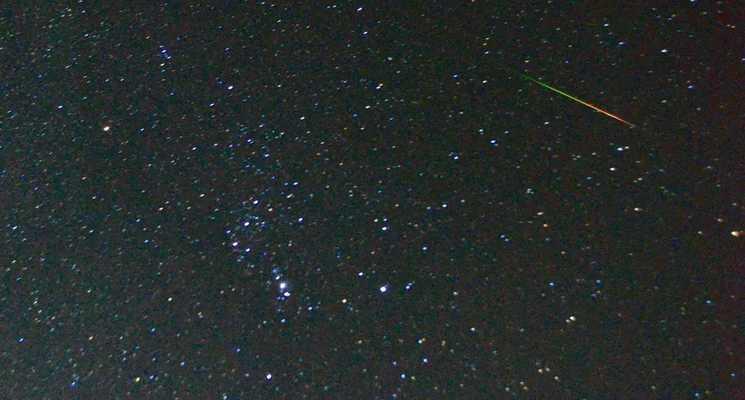 わらび平森林公園キャンプ場の画像mc4958