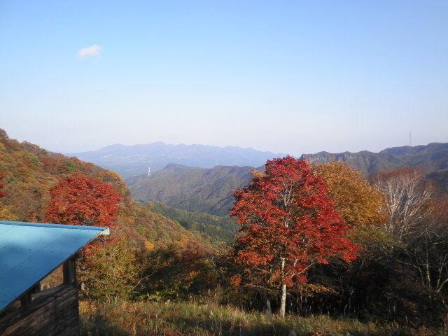 わらび平森林公園キャンプ場 の公式写真c4965