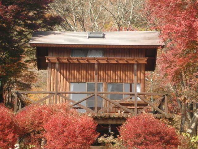 わらび平森林公園キャンプ場 の公式写真c4968