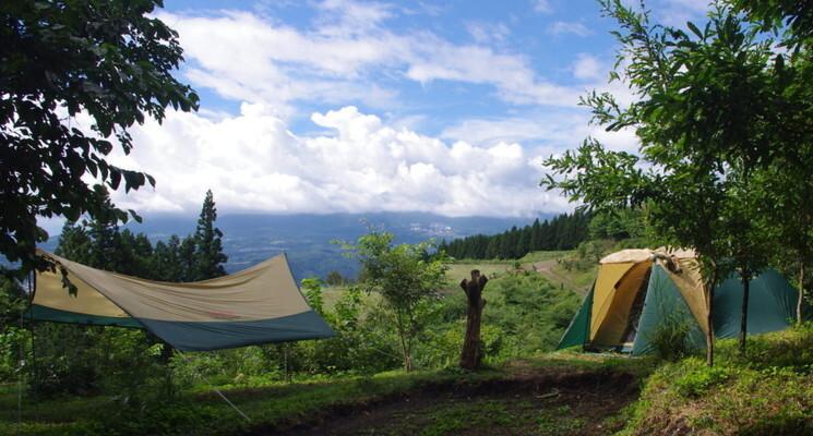 くりの木キャンプ場の画像mc7334
