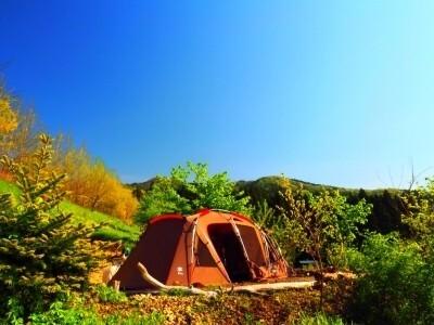 くりの木キャンプ場の画像mc7337