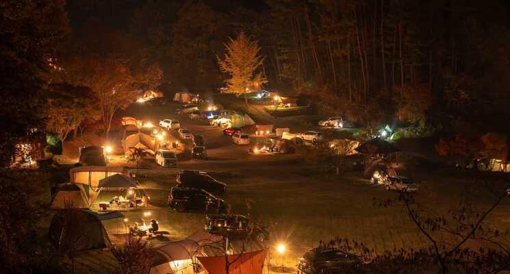 星の降る森の画像mc9900