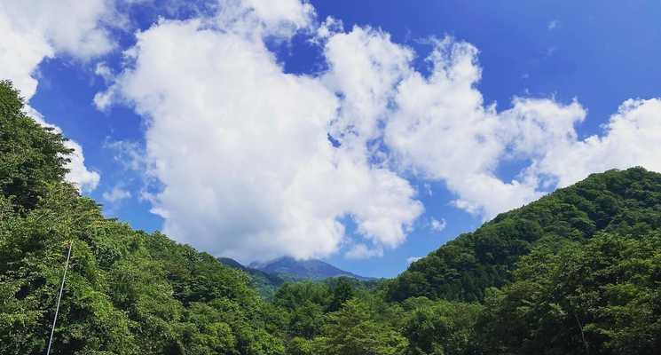 桐の木平キャンプ場の画像mc7994