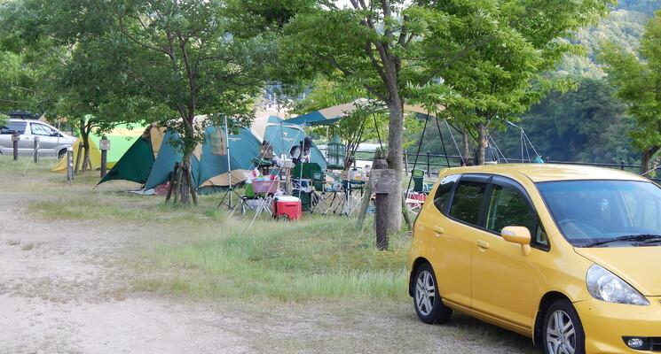 江の川カヌー公園さくぎの画像mc14875