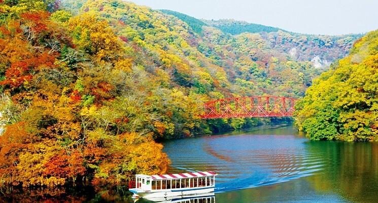 休暇村 帝釈峡(くぬぎの森キャンプ場)の画像mc4711