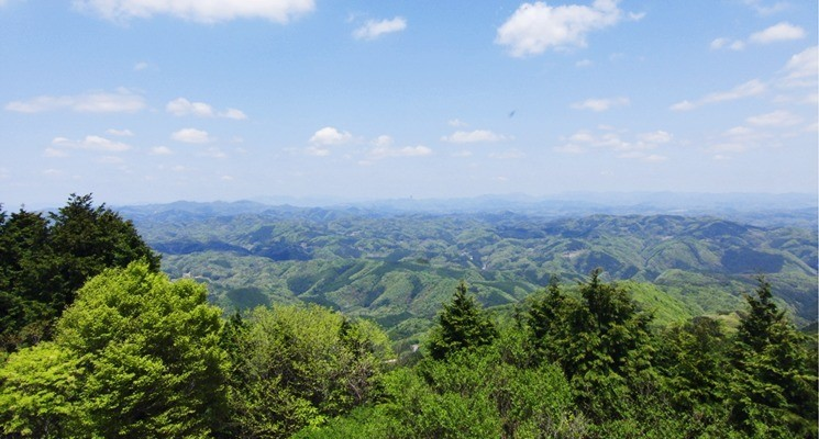 星居山森林公園キャンプ場の画像mc3485
