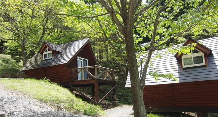 星居山森林公園キャンプ場の画像mc3486