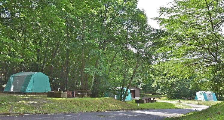 もみのき森林公園オートキャンプ場の画像mc7252