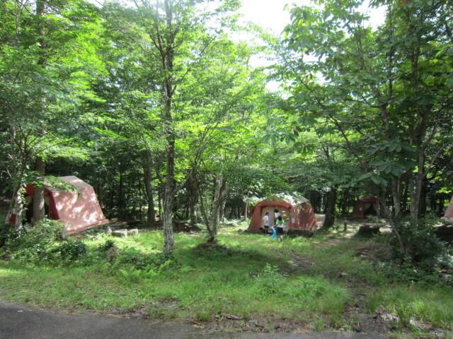 もみのき森林公園オートキャンプ場 の公式写真c2293