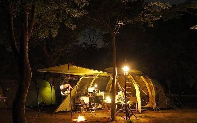 長瀞キャンプ村の画像mc8898