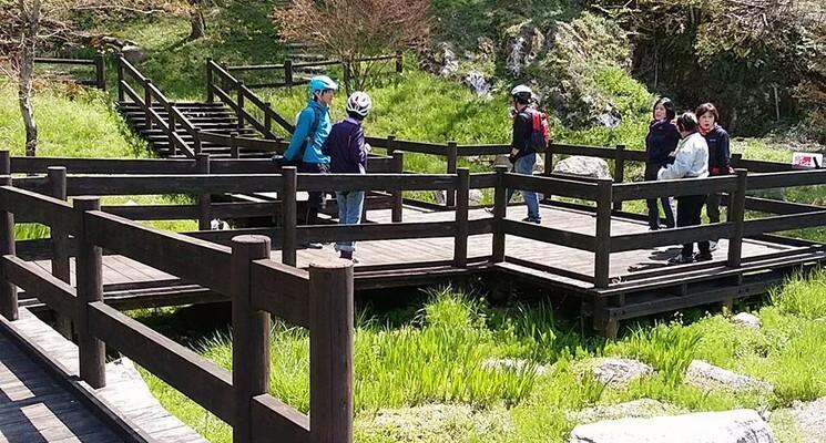 十種ヶ峰ウッドパークオートキャンプ場の画像mc2044