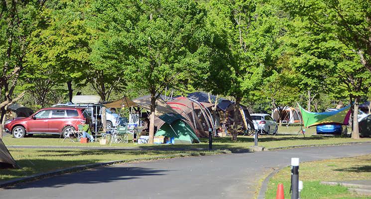 早川町オートキャンプ場の画像mc8987