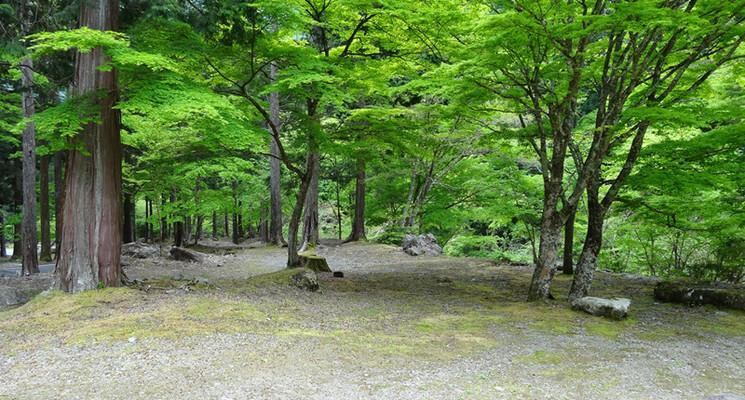 福士川渓谷青少年旅行村奥山キャンプ場の画像mc4986
