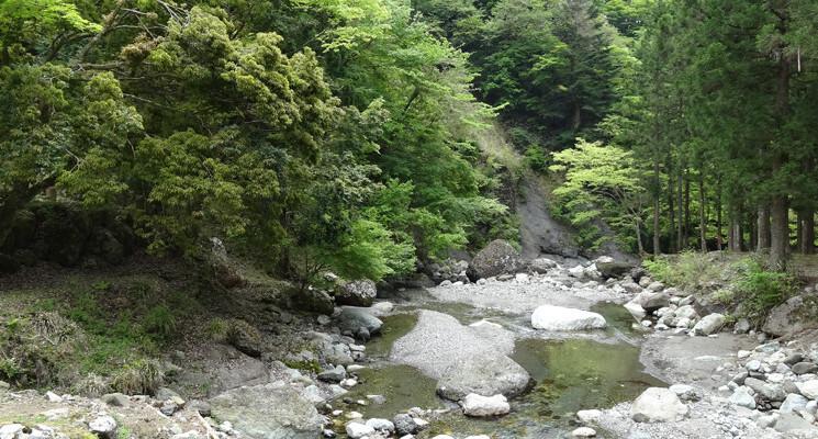 福士川渓谷青少年旅行村奥山キャンプ場の画像mc4988