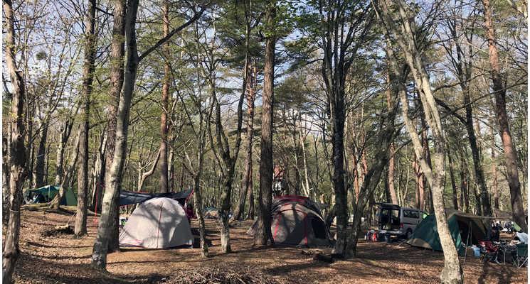 撫岳荘キャンプ場の画像mc20260
