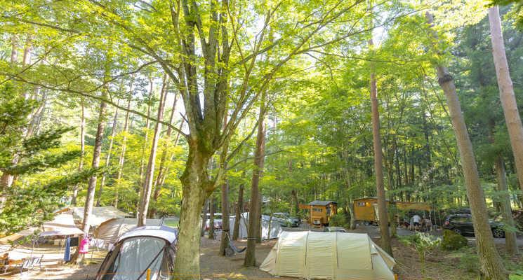 富士満願ビレッジファミリーキャンプ場の画像mc16574
