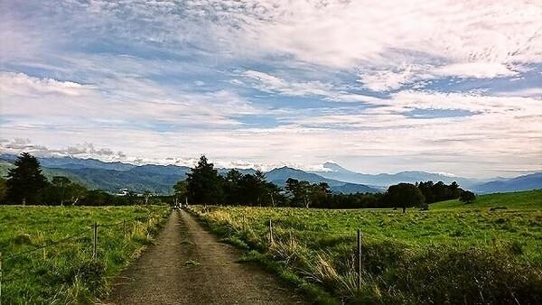 八ヶ岳美し森ロッジ(旧名称:美し森ファーム)の画像mc10294