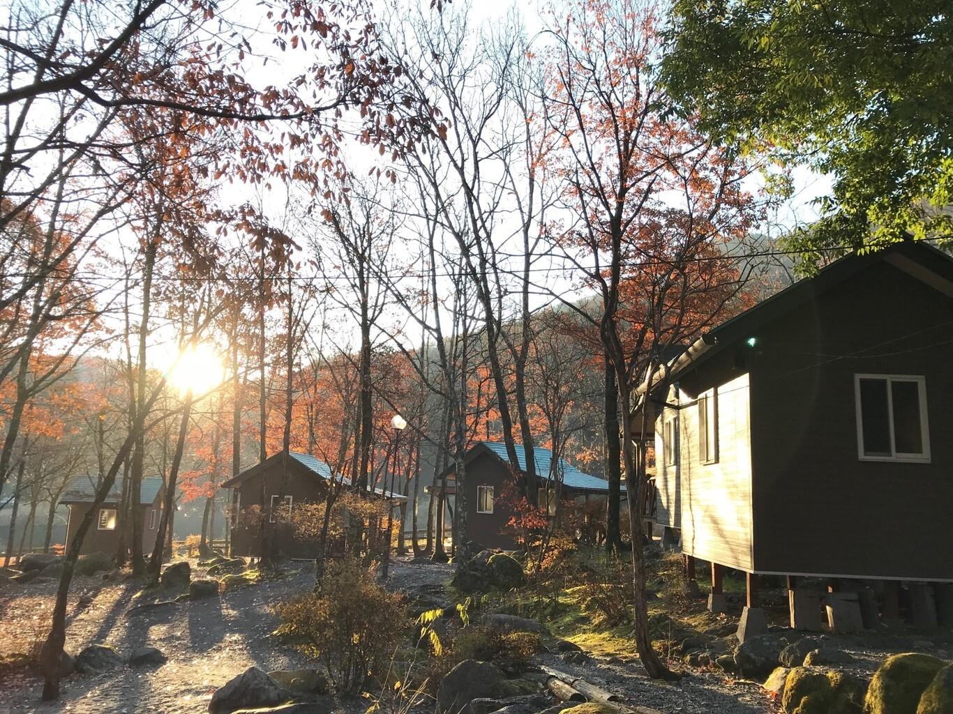 篠沢大滝キャンプ場 の公式写真c17807