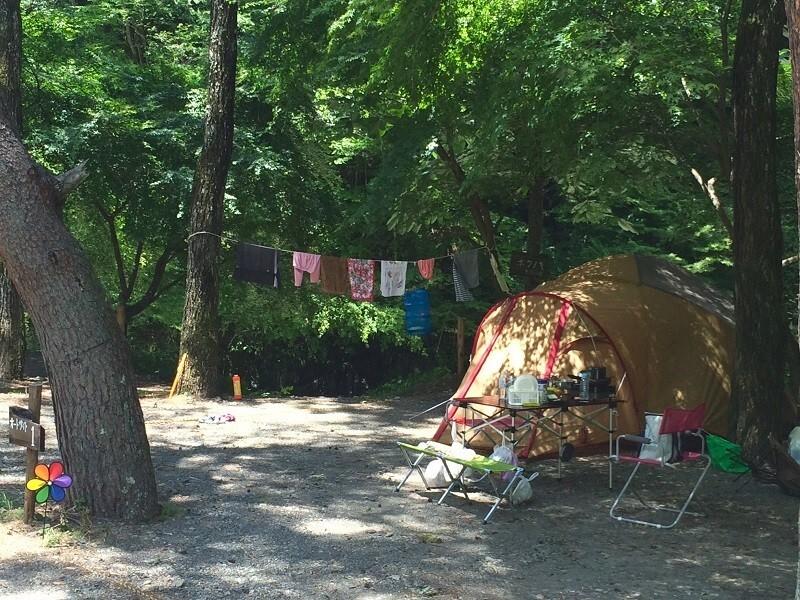 ほうれん坊の森キャンプ場 の公式写真c6797