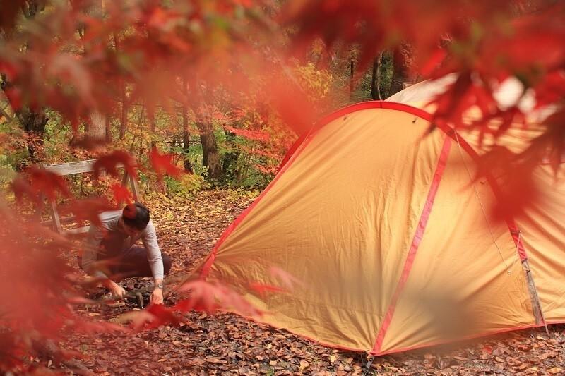 ほうれん坊の森キャンプ場 の公式写真c6798