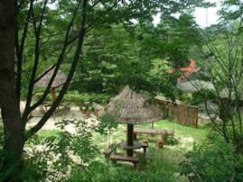 滋賀県希望が丘文化公園 の公式写真c5553