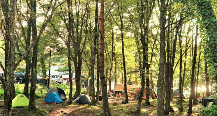 田沢湖キャンプ場の画像mc8505