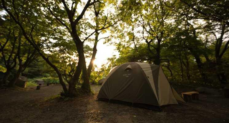五頭山麓いこいの森の画像mc3796