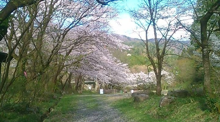五頭山麓いこいの森の画像mc7464
