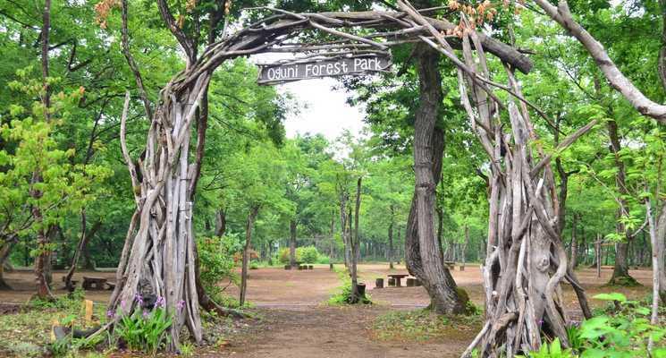 長岡市おぐに森林公園の画像mc11658