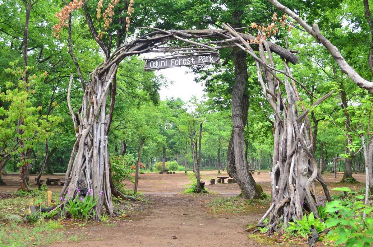 長岡市おぐに森林公園