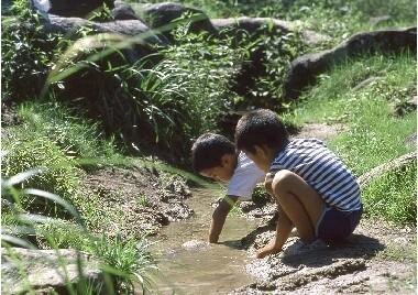 五十沢キャンプ場の画像mc5200