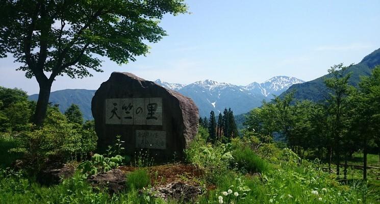 五十沢キャンプ場の画像mc5204