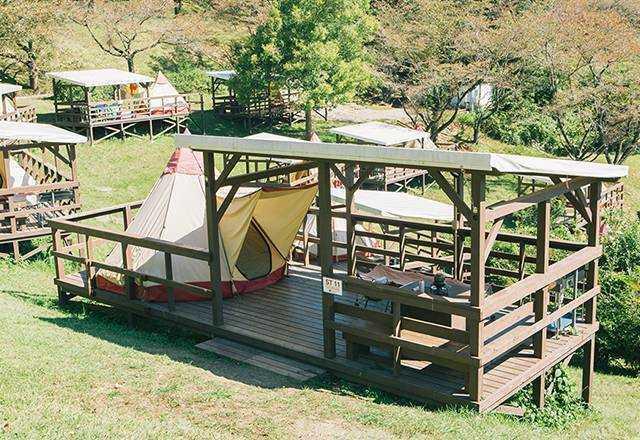 パディントン ベア キャンプ グラウンド