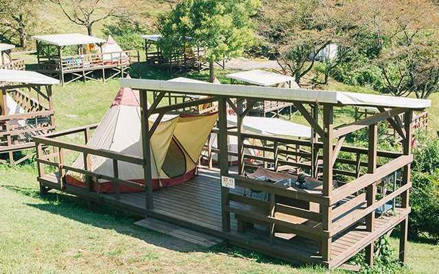 パディントンベア・キャンプグラウンドの画像mc7371
