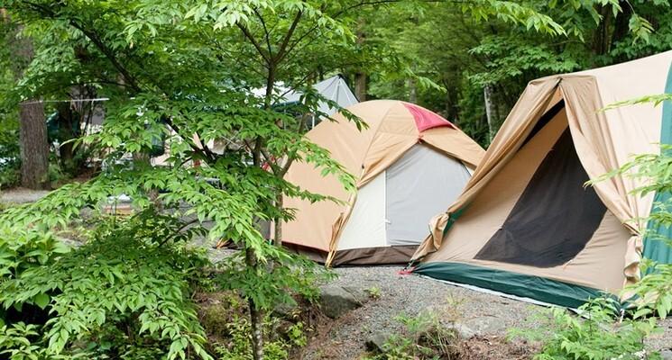 西丹沢マウントブリッジキャンプ場の画像mc4951