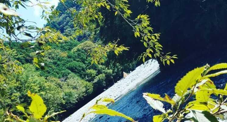 西丹沢 大滝キャンプ場の画像mc8637